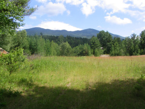 View from Pinestead Farm Lodge, Franconia, NH